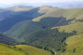 Borzhava highland meadows