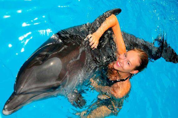 Дельфінарій Оскар - D101.jpg