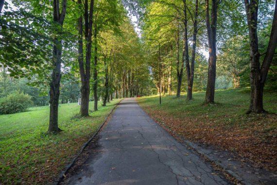 Resort park - kurortnyy_park_2.jpg