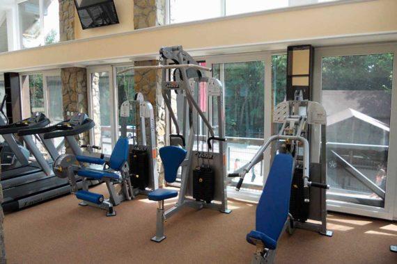 Gym Shale Graal - mal-002_09f83.jpg